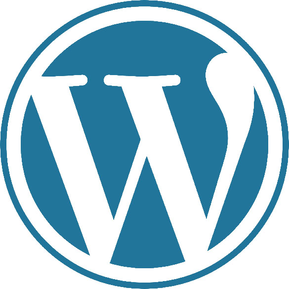 WordPress Experts Sarasota MediaFocus Web Design Firm